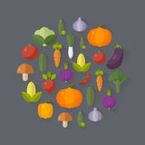 Fresh vegetables. Diet and organic food concept. Vector illustration Royalty Free Stock Photos
