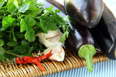 Fresh vegetables, eggplant Royalty Free Stock Images