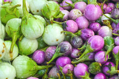 Fresh vegetables - eggplant purple and green market. Stock Photography