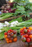 Fresh vegetables at a farmers market Stock Images