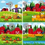 Fresh vegetables in the farms. Illustration Stock Image