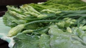 Fresh vegetables favourite for Thai kitchen. Fresh and clean vegetable ready for cooking Stock Photos