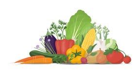 Fresh vegetables vector illustration