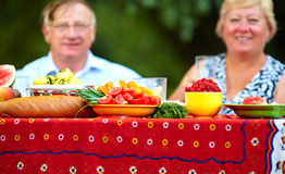 Fresh vegetables and fruits on picnic Royalty Free Stock Image