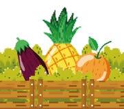 Fresh vegetables and fruits pixelated. Fresh vegetables and fruits inside wooden box pixelated cartoon vector illustration graphic design vector illustration