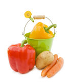 Fresh vegetables from the garden Royalty Free Stock Image