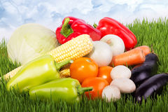 Fresh vegetables on the green grass against sky Royalty Free Stock Photography