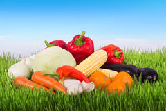 Fresh vegetables on the green grass against sky Royalty Free Stock Photos