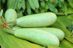 Fresh vegetables - green hatch in the market. Stock Photo