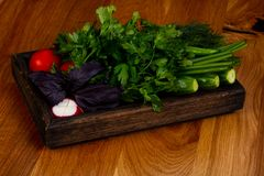 Fresh vegetables with herbs. Fresh vegetables with green herbs Royalty Free Stock Photos