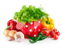Fresh vegetables with green herbs in watering can Royalty Free Stock Photos