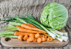 Fresh vegetables with green leaves of cabbage, carrots and onions.  Stock Image