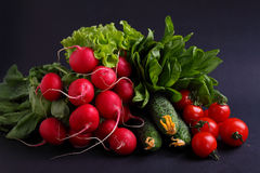 Fresh vegetables and greens (cucumber, radish, tomato, lettuce, spinach) on the metal tray. On a black background Stock Photo