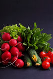Fresh vegetables and greens (cucumber, radish, tomato, lettuce, spinach) on the metal tray. On a black background Stock Image