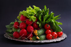 Fresh vegetables and greens (cucumber, radish, tomato, lettuce, spinach) on the metal tray. On a black background Royalty Free Stock Photography