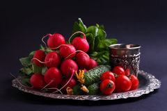 Fresh vegetables and greens (cucumber, radish, tomato, lettuce, spinach) on the metal tray. On a black background Stock Images