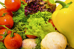 Fresh vegetables and greens. Сlose up healthy  fresh vegetables and greens were harvested for restaurant Stock Images