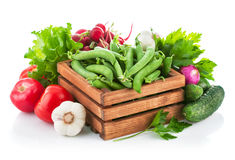 Fresh vegetables with greens. Fresh vegetable with greens.  on white background Stock Image