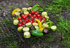 Fresh vegetables for grilling outdoors Royalty Free Stock Image