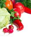 Fresh vegetables. Group of fresh ripe vegetables Stock Image