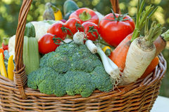 Fresh vegetables - Healthy food Royalty Free Stock Image