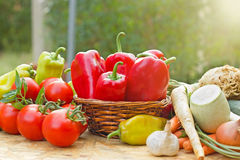 Fresh vegetables - healthy food Stock Images