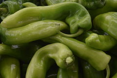 Fresh vegetables, healthy nutrition, sale of food. Long green pepper, dietary food, vegetables, food, illustration for shops, the markets and the websites for royalty free stock photography
