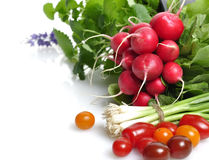 Fresh Vegetables And Herbs Stock Photography