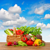 Fresh vegetables and herbs with blue sky Stock Image