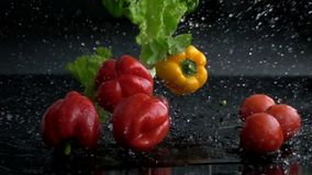 Fresh vegetables and herbs falling with water in slow motion stock video footage