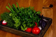 Fresh vegetables with herbs. Fresh vegetables with green herbs Royalty Free Stock Photography