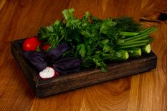 Fresh vegetables with herbs. Fresh vegetables with green herbs Stock Photo