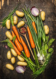 Fresh vegetables and herbs ingredients for cooking with old spoon on dark rustic wooden background Stock Photography