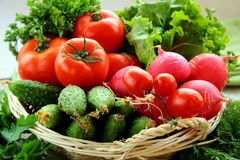 Fresh vegetables and herbs mix Royalty Free Stock Photos