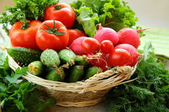 Fresh vegetables and herbs mix Royalty Free Stock Images