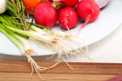 Fresh vegetables and herbs on a plate. Cooking raw ingredients on kitchen Royalty Free Stock Image