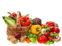Fresh vegetables and herbs. Shopping basket. Healthy nutrition Stock Image