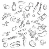 Fresh vegetables and herbs sketches Royalty Free Stock Images