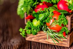 Fresh vegetables and herbs in wooden box. Close up fresh tomatoes, radish, dill, parsley, kohlrabi and ramsons in wooden box on dark wooden surface Royalty Free Stock Photo