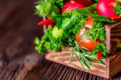 Fresh vegetables and herbs in wooden box. Close up fresh tomatoes, radish, dill, parsley, kohlrabi and ramsons in wooden box on dark wooden surface Stock Photography