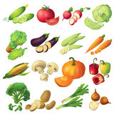 Fresh Vegetables Icon Set stock illustration
