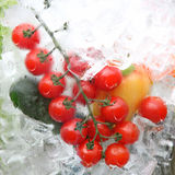 Fresh Vegetables In Ice Stock Photo