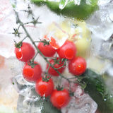 Fresh Vegetables In Ice Royalty Free Stock Photography