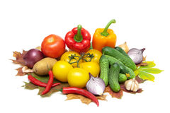 Fresh vegetables isolated on white background close up Royalty Free Stock Photography