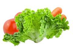 Fresh vegetables isolated on white background. Green salad isolated on white.Vegetables isolated on white background as package design element. Healthy eating royalty free stock image