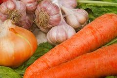 Fresh vegetables from kitchen garden. The different fresh vegetables from kitchen garden Stock Image