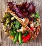 Fresh vegetables. Stock Photography