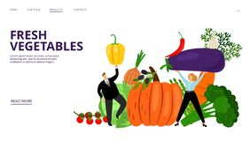 Fresh vegetables landing page. Vector people, pumpkin, pepper, olives, tomatoes. Farm market web page template. Vegetable landing page, pepper and pumpkin royalty free illustration