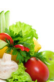 Fresh vegetables with  leaves of parsley,salad Royalty Free Stock Image