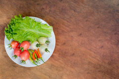 Fresh vegetables, lettuce, tomato and chili on the white dish Royalty Free Stock Photography